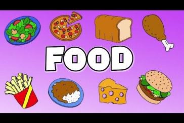 The food – English and Natural Science – Recursos para trabajar en el aula