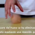 Experimento: Huevo saltarín [Vídeo]