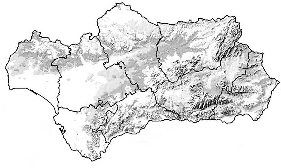Andalucia-mapa-relieve