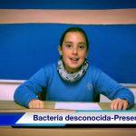 Hallan una bacteria desconocida - CIENCIAS PRESEN TV