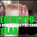 EXPERIMENTO Escolar - Mezcla heterogénea vs homogéneo