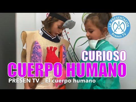 El cuerpo humano explicado por niña de Educación Infantil