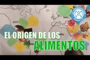 El ORIGEN de los ALIMENTOS | Educación para la Salud