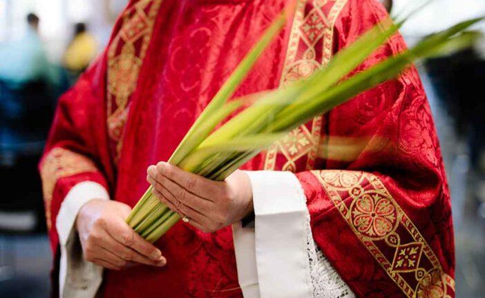 10 Actividades para adentrarnos en el Domingo de Ramos