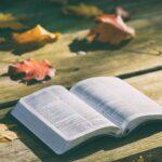 10 IDEAS de actividades para fomentar la lectura y escritura | DÍA DEL LIBRO